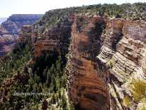 The Grandest Canyon Collection