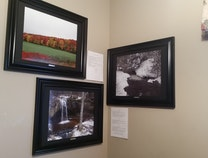Photo of Conaty Collection Series