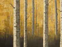 Photo of Birches in Yellow Forest