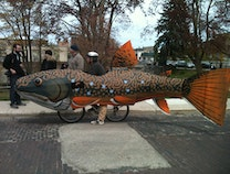 Photo of Trout Bike